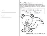 Animal Genetics Worksheet (Genotype & Phenotype Practice)