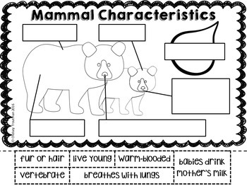 Animal Group Characteristics Labeling Diagrams