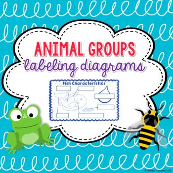 Animal Group Characteristics Labeling Diagrams