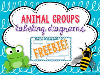 Animal Group Characteristics Labeling Diagrams FREEBIE!