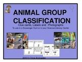 Animal Group Classification