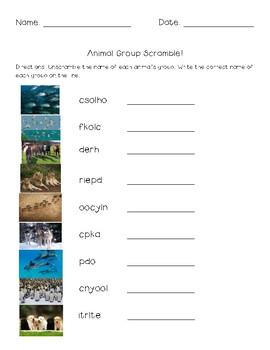 Animal Group Names Packet