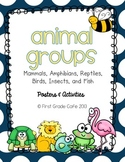 Animal Group Posters & Activities