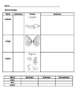 Animal Group Vocabulary