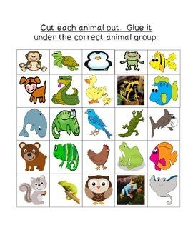 Animal Groups