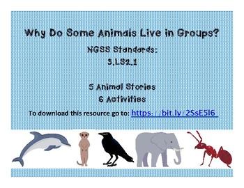 Animal Groups 3-LS2-1