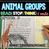 Animal Groups ~ 3rd Grade Reading Passages w/ Stop Think and Write
