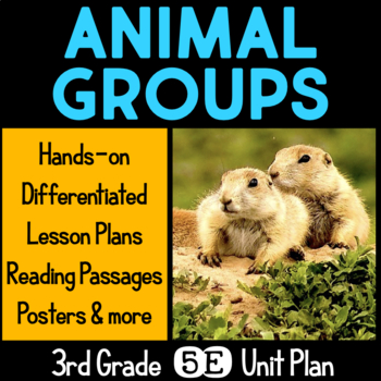 Animal Groups 5E Unit Plan for Third Grade