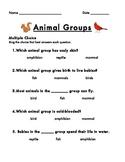 Animal Groups Assessment