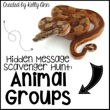 Animal Groups Review Activities