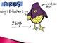 Animal Groups - Birds