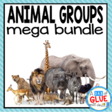 Animal Group Bundle Mammals Fish Birds Reptiles Amphibians Fish Insects Spiders