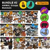 Animal Groups Clip Art Mammals Bundle