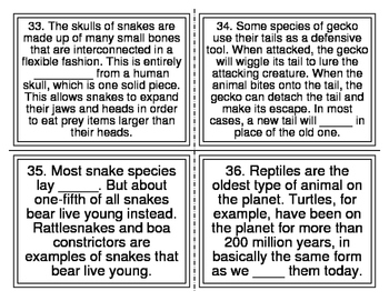 Animal Groups Cloze Task Cards (44 Cards)