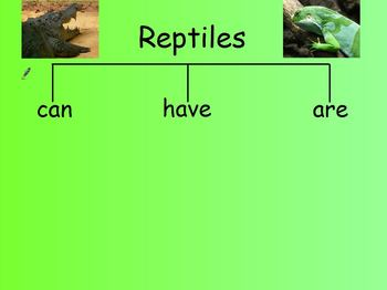 Animal Groups Flipchart Unit