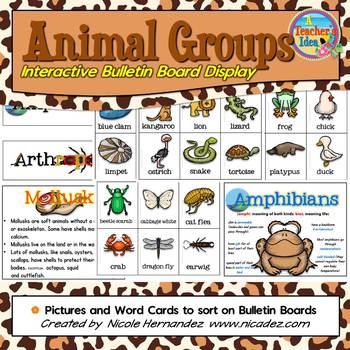 Animal Groups - Interactive Bulletin Board Display