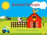 Animal Groups (Unit 3 Lesson 15 Journeys Common Core Reading Series)