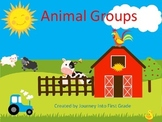 Animal Groups Journeys Unit 3 PowerPoint