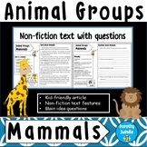 Animal Groups - Mammals - Nonfiction Text, Questions, FREE Poster