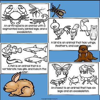 Animal Groups Mini Book for Early Readers: Animal Classifications