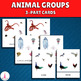 Animal Groups Sorting Cards