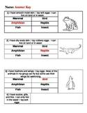 Animal Groups Test