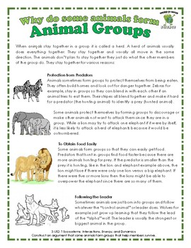 Animal Groups: Why do animals form groups that help members survive?
