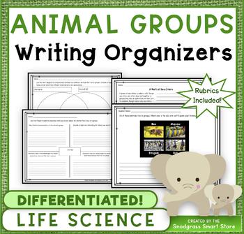 Animal Groups: Writing Activities & Rubrics (NGSS 3-LS2-1)