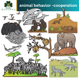 Animal Groups and Cooperation Clip Art