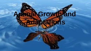 Animal Growth and Adaptations