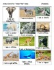 Animal Guess Who Game