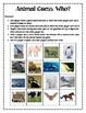 Animal Guess Who Game, Deductive Reasoning Math Game