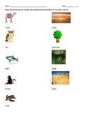 Animal Habit Assessment