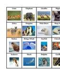Animal Habitat Cards