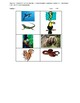 Animal Habitat Classification Assessment