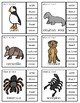 Animal Habitat Clip Cards