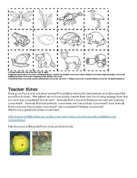 Pond Habitat Lapbook - Pond Life Cycle Food Chain Overview