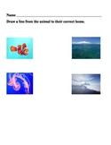 Animal Habitat Matching Worksheet
