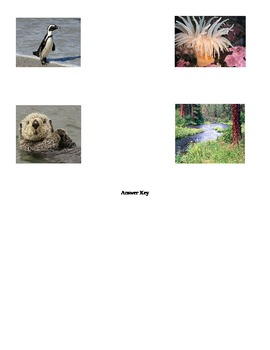 Animal Habitat Matching Worksheet