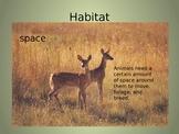Animal Habitat PPT