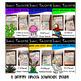 Animal Habitat Research Flipbooks BUNDLE of Savings