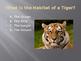 Animal Habitat Review