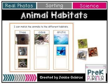 Animal Habitat: Sorting Mats