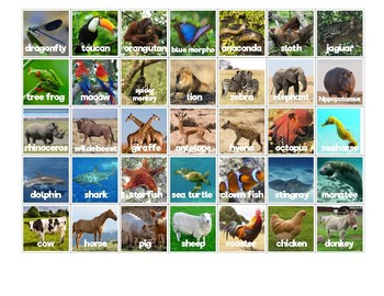Animal Habitat Sorting Mats: Real Animals