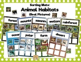 Animal Habitat Sorting Mats: Real Animals