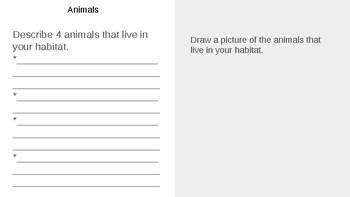 Animal Habitat and Adaptations