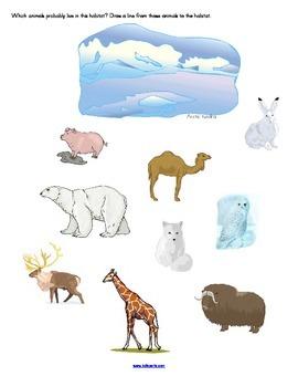 Animal Habitats: Activities for 10 Habitats