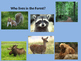 Animal Habitats Power Point