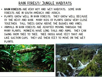 Animal Habitats PowerPoint- Editable