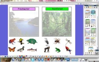 Animal Habitats                  { Promethean Board }